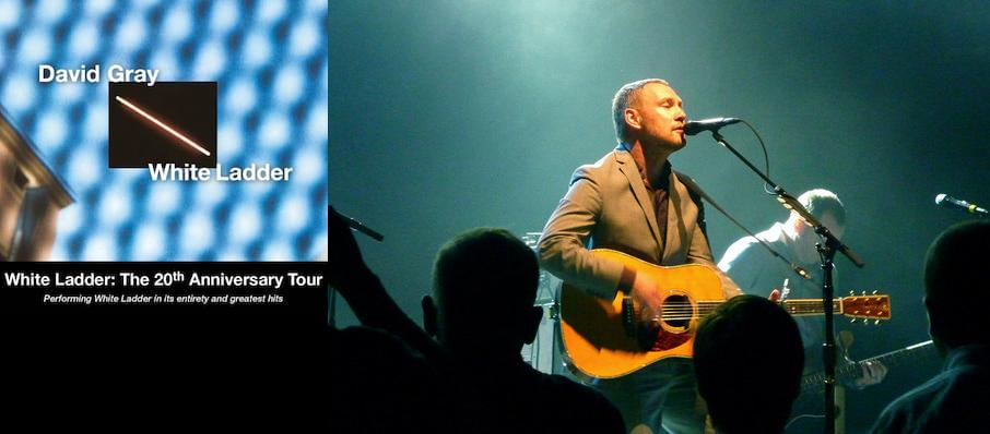 David Gray at Meadow Brook Amphitheatre