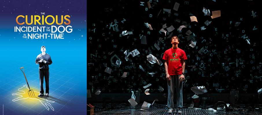 The Curious Incident of the Dog in the Night-Time at Fisher Theatre