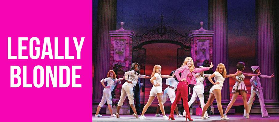 Legally Blonde at Bonstelle Theatre