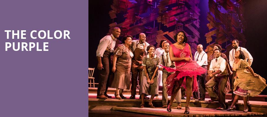 The Color Purple, Fisher Theatre, Detroit