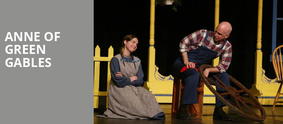 Anne of Green Gables, Meadow Brook Theatre, Detroit