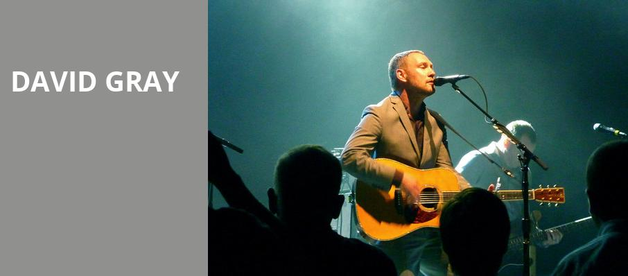 David Gray, Meadow Brook Amphitheatre, Detroit