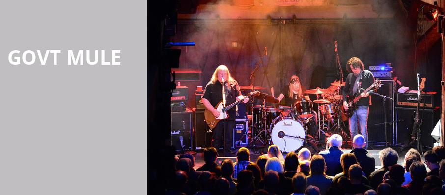 Govt Mule, The Fillmore, Detroit